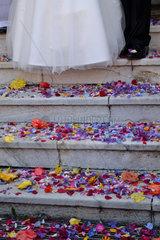 Streublumen bei der Hochzeit gestreut
