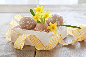 Frische Osterglocke in Eierschale und bemalte Ostereier