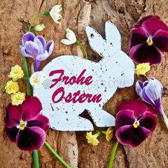 Fruehlingsblumen und ein Osterhase mit Textfreiraum