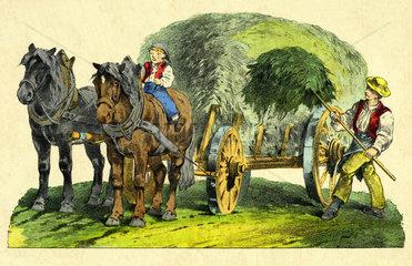 Heuernte  Landarbeiter belaedt Heuwagen  1865