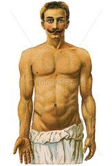Mann mit nacktem Oberkoerper  Unterhose  1900