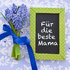 Ein Strauss frische Traubenhyazinthen und eine kleine Tafel auf Blau