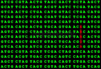 Symbolbild DNA-Fehler