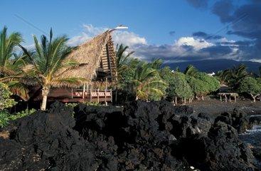 USA  Hawaii  Big Island  Kona Coast Resort