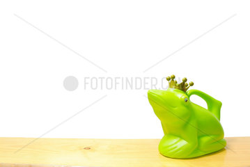 Frosch; Froschkoenig; gruen; Giesskanne; Krone; green; frog; Koenig; Behaelter  grinsen; Gesicht; Griff; Symbol; Spass; witzig; Schauen; looking; sehen; viewing; Erfolg; Erhaben; Fabel; Fabeln; farbig; glaenzend; Glanz; Traum; Traumwelt; Prinz; Maerchenprinz; Gl