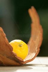 Zitrone; Zitronen; Citrus; Frucht; Obst; Natur; Holz; Holzstueck; Rinde; Aussenaufnahme; gelb; gruen; leuchten; Sommer; sommerlich; natuerlich; bio; oeko; oekologisch; Deko; Dekoration; Ambiente; Stilleben; natuerlich; Fruchterlebnis; drei; Schale; Citrusfrucht;