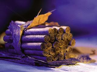 Zigarre  Zigarren  Bund  Genuss  Tabak  Nikotin  Genussmittel  Tabakindustrie  Nigaragua