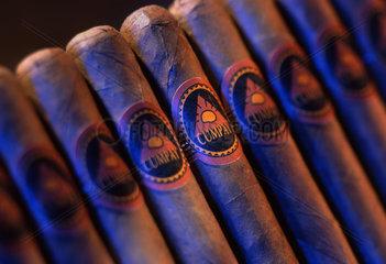 Tabak  Zigarren