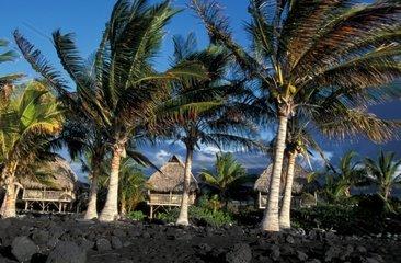 USA  Hawaii  Big Island  Kona Cosat  Kona Village Resort