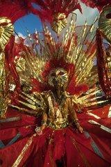 Saint Marteen Carnival  Netherland Antilles