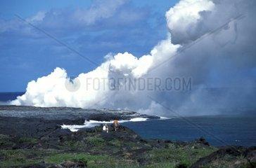 USA  Hawaii  Big Island  Volcano  National Park  Puna Coast