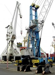 Kraene beim Verladen im Hafen