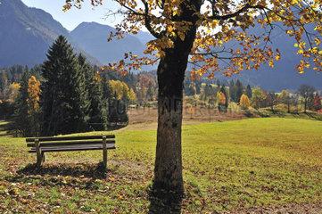 Aussichtspunkt Hofmannsruh  Oberstdorf  Allgaeuer Alpen  Oberallgaeu  Bayern  Deutschland  Europa