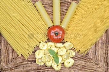 verschiedene italienische Pasta  Spaghettini  Spagetti  Cannelloni  Maccheroncini  Maccaroni  Tortellini  Teigwaren  Nudeln  Tomate  Basilikum