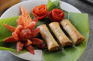Fruehlingsrollen beim Kochkurs in der Chiang Mai Thai Cookery School / Chia