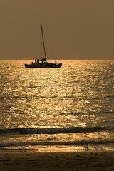 """Katamaran """"Sea Adventures"""" bei Sonnenuntergang am Strand von Whit"""