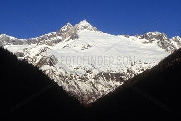 Italy  Lombardy  Valmalenco  Monte Disgrazia