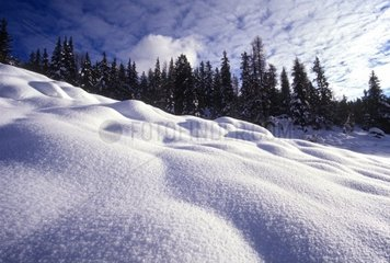 Italy  Alps  Winter  Snow
