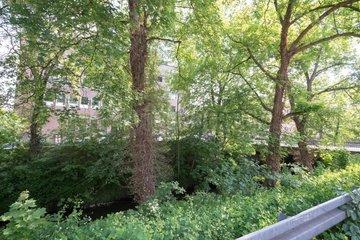 Flussbett in der Stadt