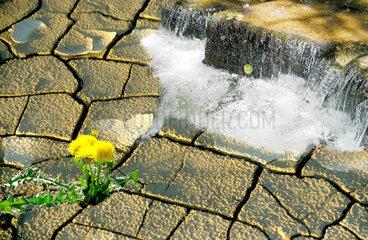 Wasser laeuft auf den rissigen Boden