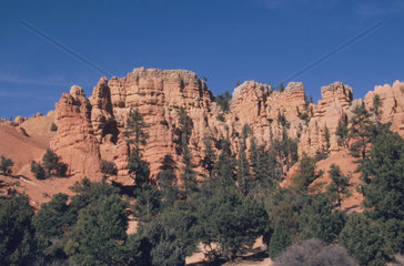 Usa  Utah  Red Canyon