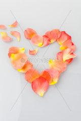 Gebrochenes Herz aus Rosen Blaettern Symbol for Liebeskummer