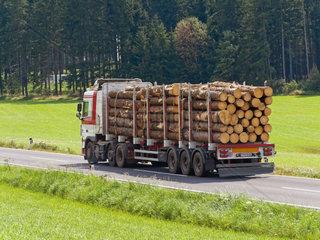 Transport von Holzstaemmen auf einem Lastwagen auf der Strasse