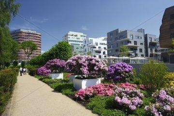 Blumenbeete auf der Internationalen Gartenschau in Hamburg  Deutschland
