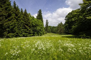 Bergpark Wilhelmshoehe