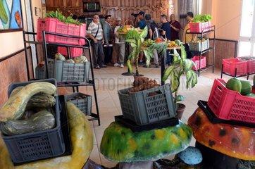 CUBA-GRANMA-SMALL BUSINESSES
