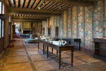 France  Loire valley  Blois  Castle