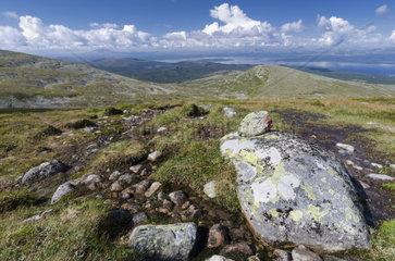 Blick vom Berg Elgahogna  Femundsmarka Nationalpark  auf den See Femunden  Hedmar Fylke  Norwegen  Juli 2011