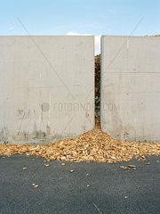 Holzspaehne vor Wand