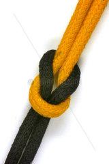 schwarz-gelbe Koalition
