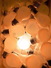 Viele Gluehbirnen  eine leuchtet Symbol fuer Ideen