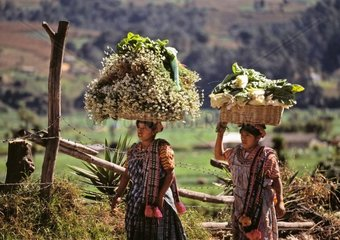 Guatemala  Almolonga  woman going to market