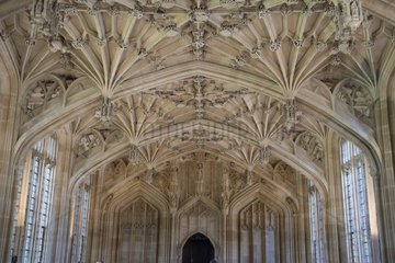 Divinity School in der Bodleian Bibliothek in Oxford