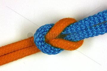 orange-blaue Koalition