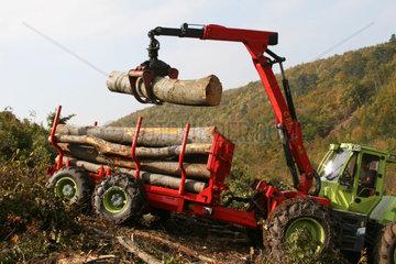 Holzarbeiten in schwierigem Gelaende