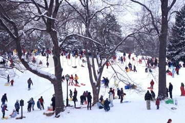 USA  New York City  people sledging at Central Park in winter