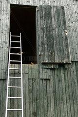 Leiter an der Scheunenwand