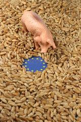 Eurozeichen und Schweinchen