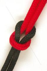rot-schwarze Koalition