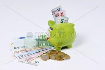 Sparschwein mit Euro Scheinen und Euro Muenzen