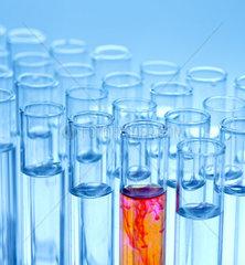 Reagenzglaeser bei einem Versuch im Chemie Labor