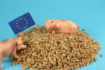 Europafahne und Schweinchen