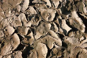 Erdschollen ausgetrocknete Erde in einer Duerre periode