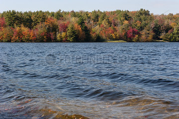Gentle waves on lake in autumn