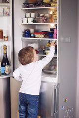 Little boy reaching for something in refrigerator