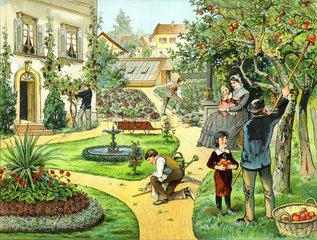 Gartenarbeit  Gutshof  Apfelernte  1885